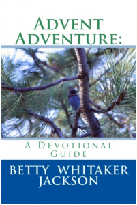 advent-adventure-devotional-guide