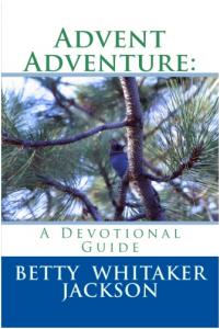 advent-adventure-devotional-guide